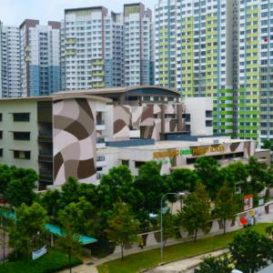 Seng Kang Green Primary School
